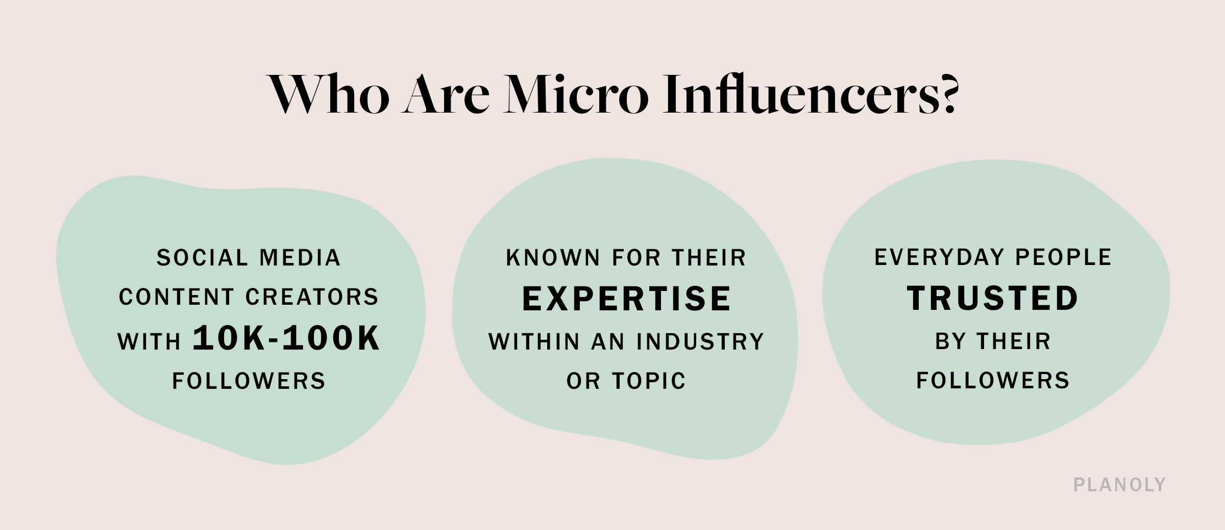 PLANOLY - Blog - Who Are Micro Influencers - Image 1