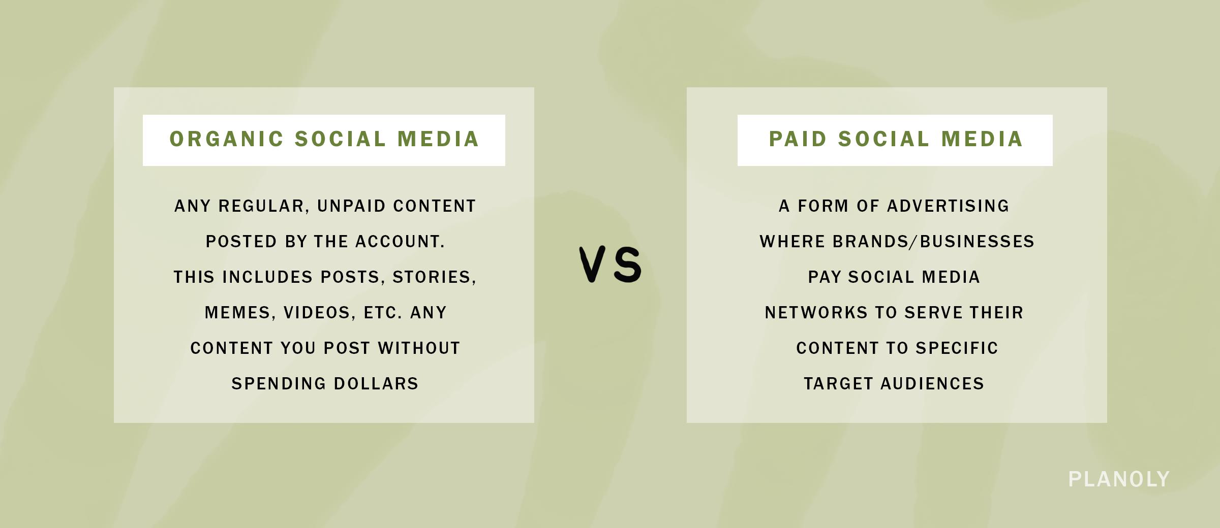 PLANOLY-Blog Post-Organic vs Paid Social-Image 1
