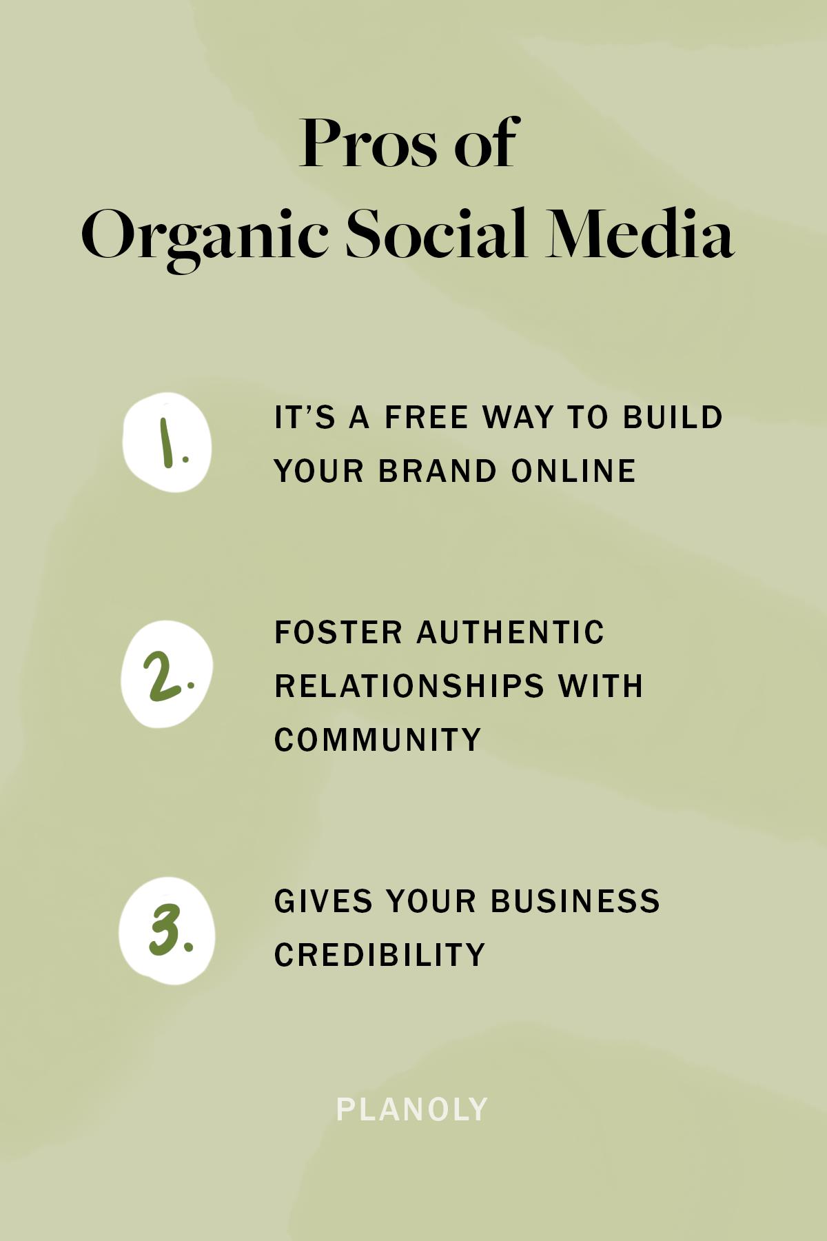 PLANOLY-Blog Post-Organic vs Paid Social-Image 2