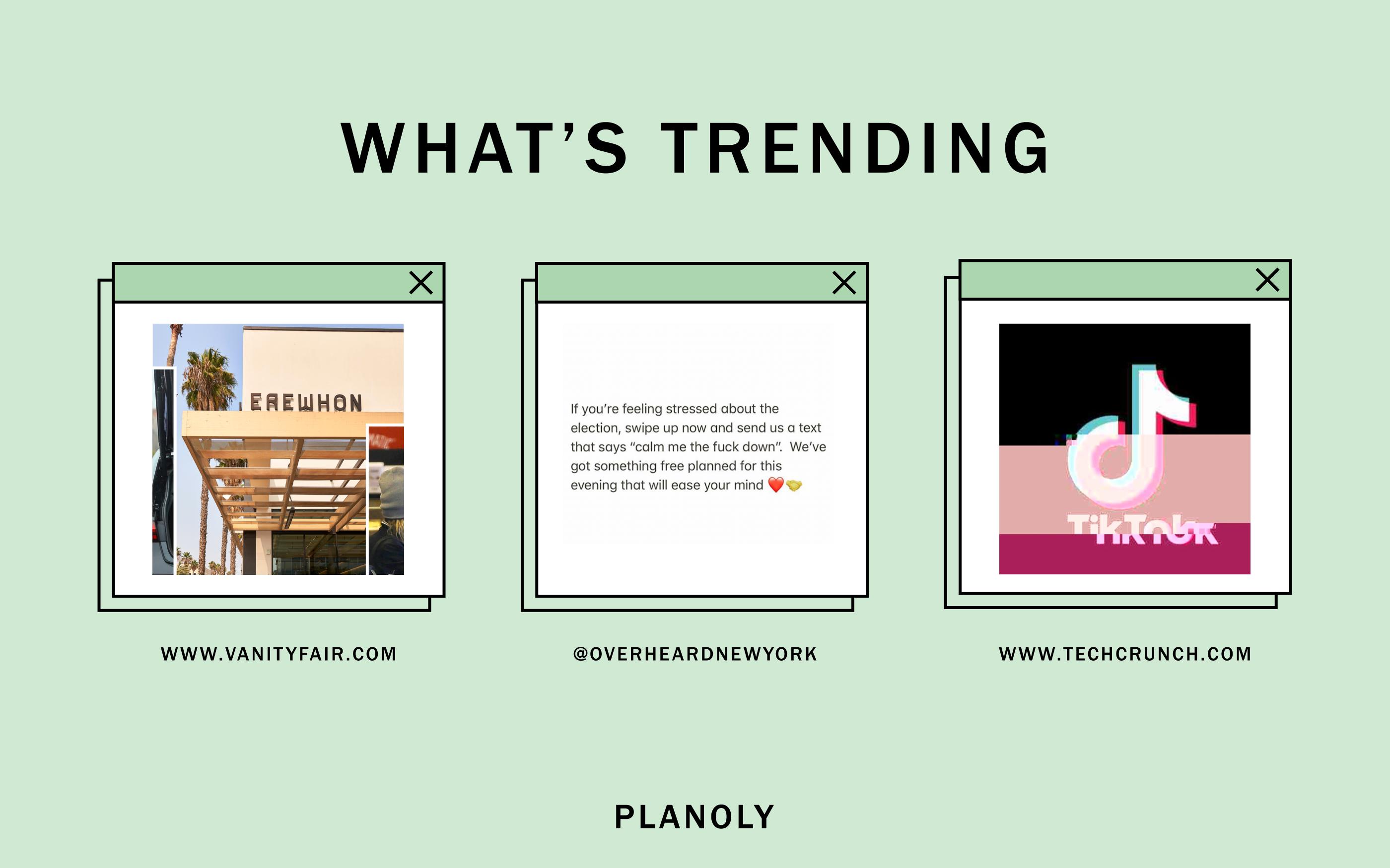 PLANOLY - Blog Post - Social Sphere - Week of 11.02.20 - Image 2