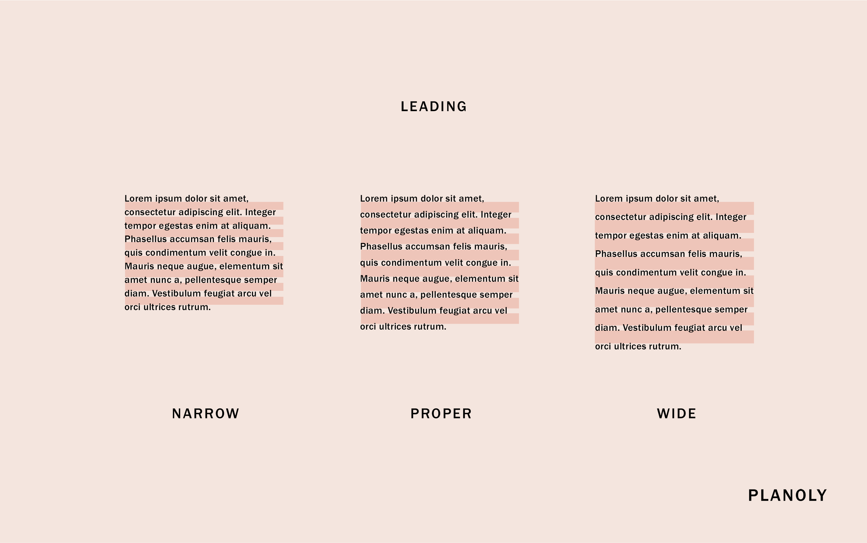 PLANOLY - Blog Post - Typography 101 - Image 5