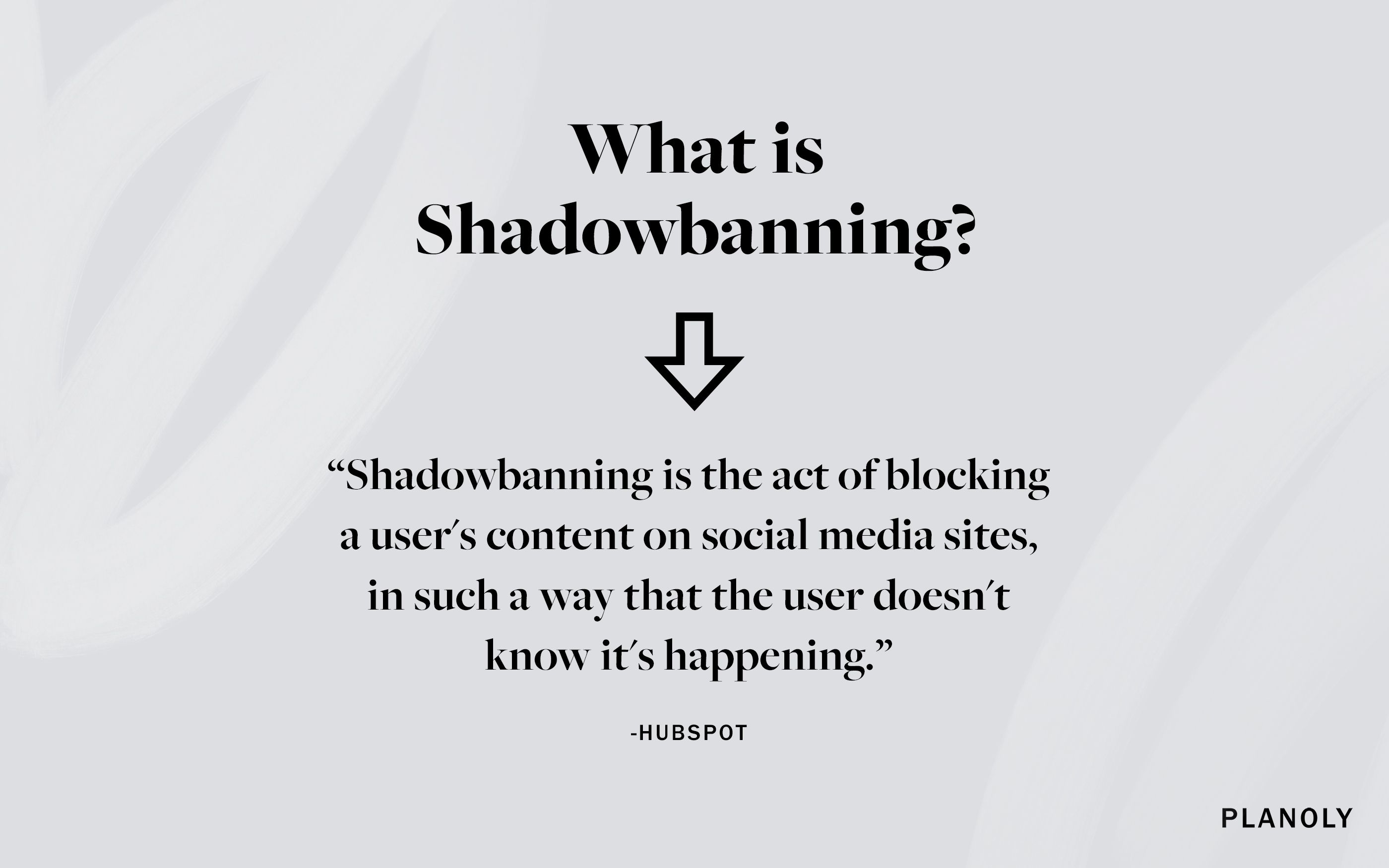 PLANOLY - Blog Post - What is Shadowbanning - Image 1
