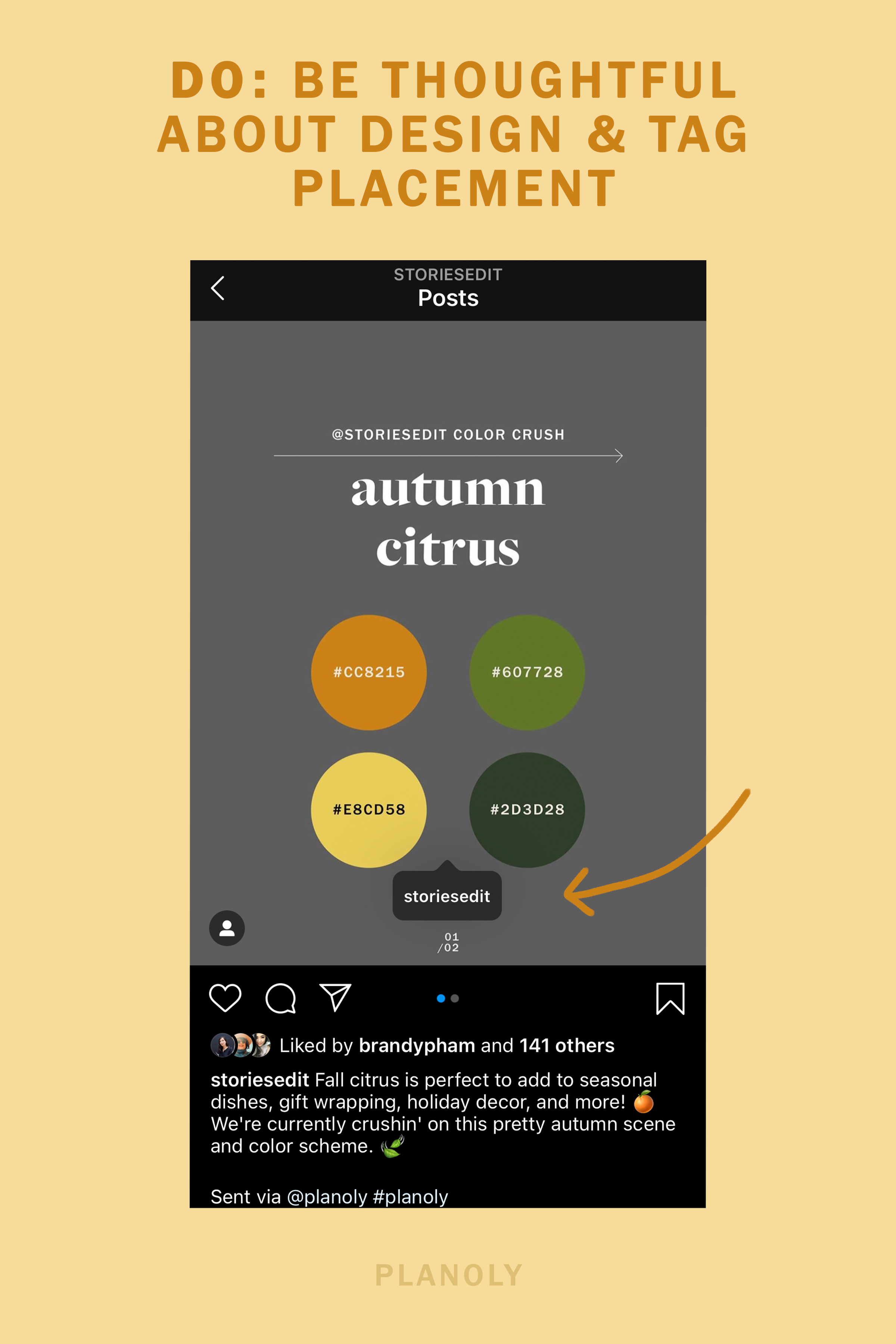 PLANOLY-Blog Post-Intagram Best Practices for Designers-Image 3