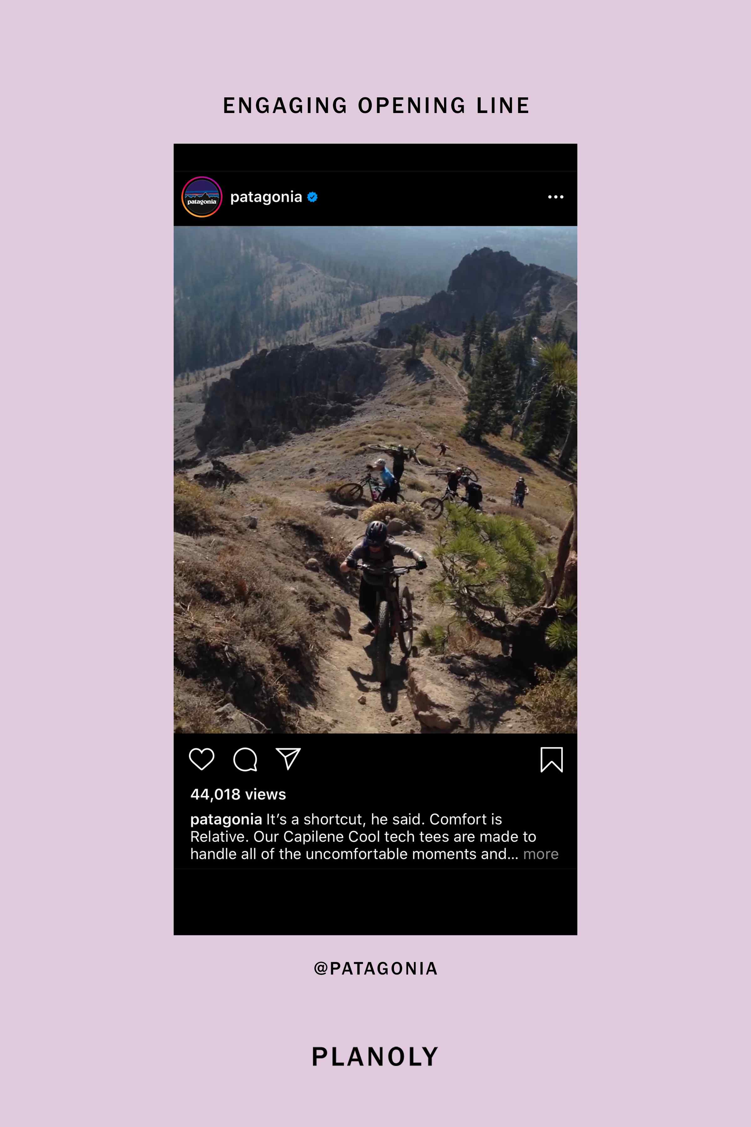 PLANOLY-Blog-Post-The-Ultimate-Guide-to-Writing-Better-Instagram-Captions-Image-1